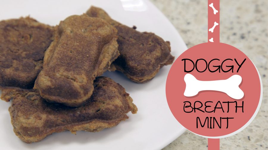Homemade Doggy Breath Mint Recipe